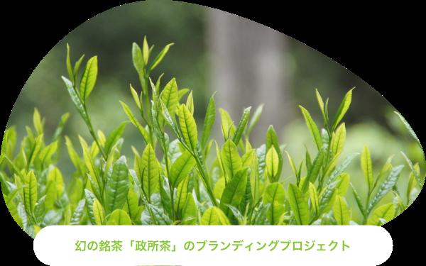 幻の銘茶「政所茶」のブランディングプロジェクト